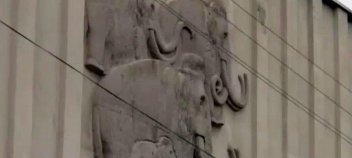 Продолжение истории с воронежским музеем-заповедником